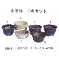 bonsai pot set